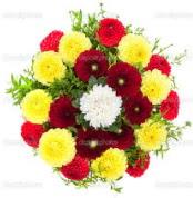 Şanlıurfa çiçek yolla , çiçek gönder , çiçekçi   13 adet mevsim çiçeğinden görsel buket