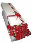 Şanlıurfa çiçek mağazası , çiçekçi adresleri  11 adet 1.kalite magnum güller