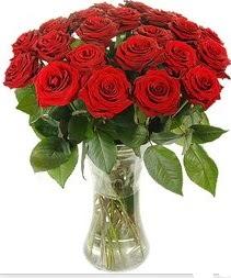 Şanlıurfa çiçek siparişi vermek  Vazoda 15 adet kırmızı gül tanzimi