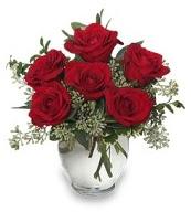 Vazo içerisinde 5 adet kırmızı gül  Şanlıurfa çiçek yolla , çiçek gönder , çiçekçi