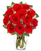 12 adet vazoda kıpkırmızı gül  Şanlıurfa çiçek , çiçekçi , çiçekçilik
