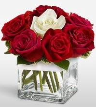 Tek aşkımsın çiçeği 8 kırmızı 1 beyaz gül  Şanlıurfa hediye çiçek yolla