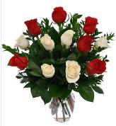 Vazo içerisinde 6 kırmızı 6 beyaz gül  Şanlıurfa online çiçekçi , çiçek siparişi