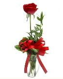 vazo içerisinde 1 adet kırmızı gül  Şanlıurfa çiçek mağazası , çiçekçi adresleri
