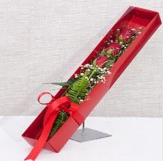 Kutu içerisinde 3 adet kırmızı gül  Şanlıurfa çiçek satışı