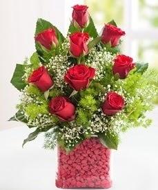 Cam içerisinde 9 adet kırmızı gül  Şanlıurfa çiçek gönderme sitemiz güvenlidir
