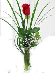 Cam içerisinde 1 kırmızı gül  Şanlıurfa hediye sevgilime hediye çiçek