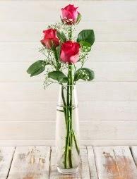Cam içerisinde 3 kırmızı gül  Şanlıurfa kaliteli taze ve ucuz çiçekler