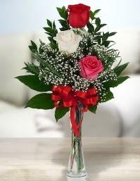 Camda 2 kırmızı 1 beyaz gül  Şanlıurfa yurtiçi ve yurtdışı çiçek siparişi
