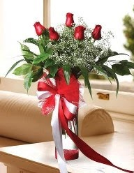 Camda 5 kırmızı gül tanzimi  Şanlıurfa çiçek mağazası , çiçekçi adresleri