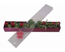 Şanlıurfa çiçek siparişi sitesi   6 adet kirmizi gül kutu içinde