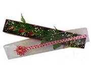 Şanlıurfa online çiçekçi , çiçek siparişi  3 adet gül.kutu yaldizlidir.
