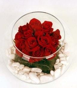 Cam fanusta 11 adet kırmızı gül  Şanlıurfa çiçek servisi , çiçekçi adresleri