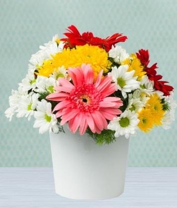 Seramik Vazoda Gelbera ve Papatya  Şanlıurfa çiçek servisi , çiçekçi adresleri