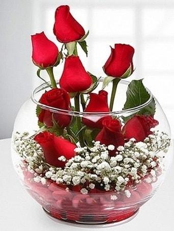 Kırmızı Mutluluk fanusta 9 kırmızı gül  Şanlıurfa İnternetten çiçek siparişi