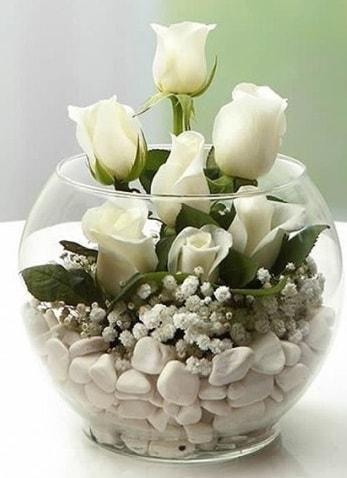 Beyaz Mutluluk 9 beyaz gül fanusta  Şanlıurfa İnternetten çiçek siparişi