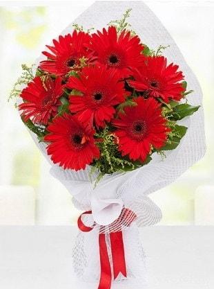 Kırmızı Gelbera Buketi  Şanlıurfa çiçek gönderme