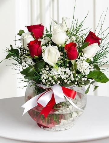 Aşk Küresi  5 beyaz 5 kırmızı gül fanusta  Şanlıurfa çiçek gönderme sitemiz güvenlidir