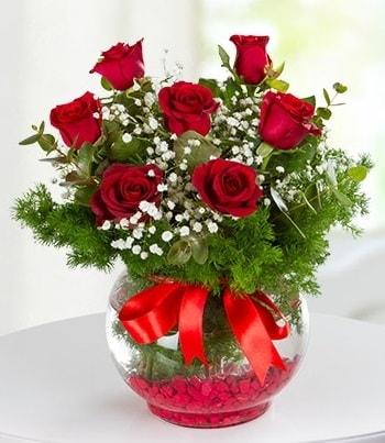 fanus Vazoda 7 Gül  Şanlıurfa güvenli kaliteli hızlı çiçek