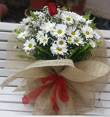Papatya 1 adet kırmızı gül buketi  Şanlıurfa çiçek yolla