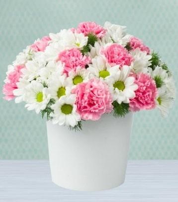 Seramik vazoda papatya ve kır çiçekleri  Şanlıurfa İnternetten çiçek siparişi
