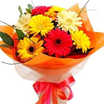 9 adet karışık gerbera buketi  Şanlıurfa güvenli kaliteli hızlı çiçek