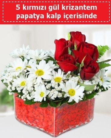 mika kalp içerisinde 5 kırmızı gül papatya  Şanlıurfa çiçek servisi , çiçekçi adresleri