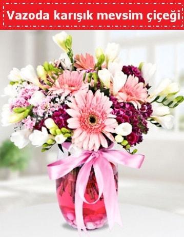 Vazoda karışık mevsim çiçeği  Şanlıurfa güvenli kaliteli hızlı çiçek