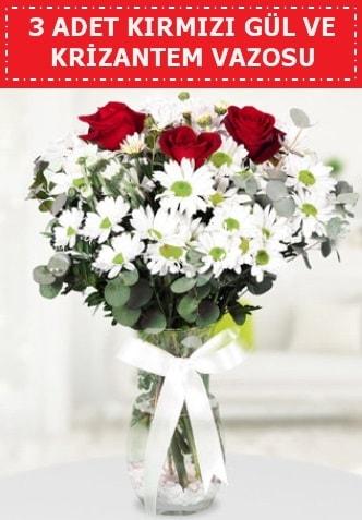 3 kırmızı gül ve camda krizantem çiçekleri  Şanlıurfa çiçek servisi , çiçekçi adresleri