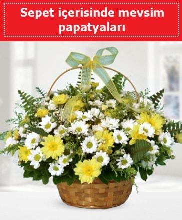 Sepet içerisinde mevsim papatyaları  Şanlıurfa yurtiçi ve yurtdışı çiçek siparişi