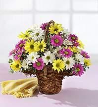 Şanlıurfa çiçek yolla  Mevsim çiçekleri sepeti